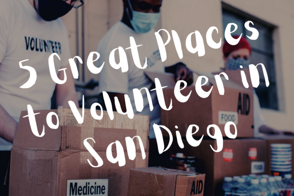 5 Great Places to Volunteer in San Diego
